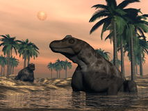 Keratocephalus dinosaurs - 3D render Stock Photography