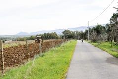 Åkerbruk traktor som plogar Sardinia Arkivbilder