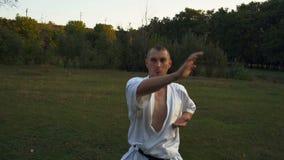 Kerel in Kimono, Karatevakman, Treinen bij Open plek in Rano City Park Morning stock videobeelden