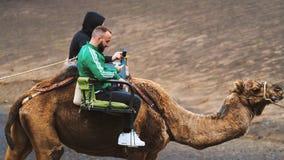 Kerels die kameel berijden royalty-vrije stock afbeelding