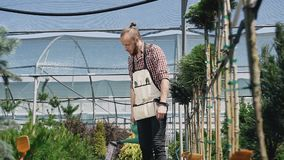 Kereltuinman die naar de serre, het water geven installaties van een groene trechter gaan Het tuincentrum is groene installaties  stock videobeelden