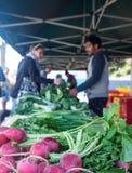 Kerikeri, Neuseeland, NZ - 19. August 2018: Rettiche am vegetab lizenzfreie stockfotos