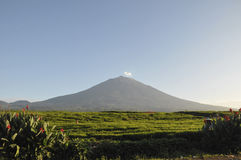 Kerinci vulkan Arkivfoton