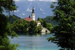 Kerk bij Afgetapt meer, Slovenië stock afbeelding