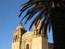 Kerk en palm - Oaxaca - Mexico Stock Afbeeldingen