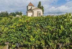 Kerk en Vinyard van Franken en Tayac Royalty-vrije Stock Foto's