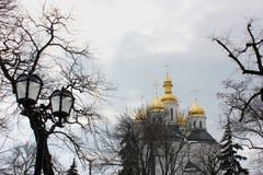 Kerk in het park nave royalty-vrije stock foto