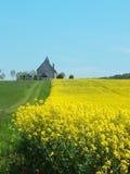 Kerk op een gebied stock foto
