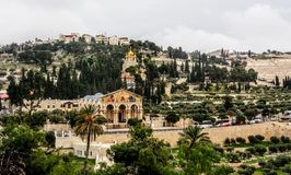 Kerk van Alle Naties en Kerk van Mary Magdalene royalty-vrije stock afbeelding