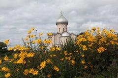 Kerk van de Verlosser op Nereditsa stock afbeeldingen