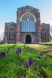 Kerk van het Heilige Kruis, Crediton Devon Royalty-vrije Stock Afbeelding
