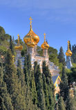 Kerk van Mary Magdalene Royalty-vrije Stock Foto