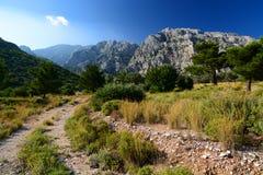 Kerkes mountain. Samos island. Greece Stock Photos