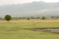 Kerkini Jeziorny teren, Grecja zdjęcia royalty free