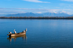 Kerkini lake in Greece Stock Image