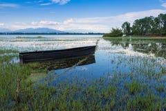 Kerkini lake in Greece Stock Photos