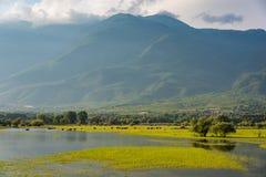 Kerkini lake in Greece Stock Photo