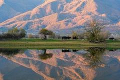 Free Kerkini Lake In Greece Royalty Free Stock Image - 169875286