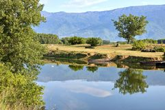 Kerkini lake at nord Greece Royalty Free Stock Photos