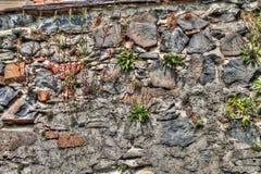 Kerkmuur in Frydlant Stock Foto's