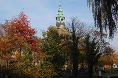 Kerktoren door bomen in de herfst wordt omringd die royalty-vrije stock afbeelding