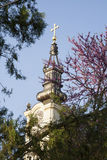 Kerktoren met gouden die kruis door boomtakken wordt gezien Stock Foto's