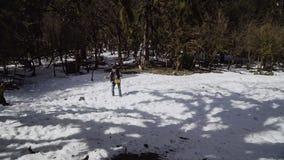 Kerl in einem karierten Hemd und in einer Weste wirft oben einen Frühlingsblumenstrauß von Mimosen mitten in einer schneebedeckte stock footage