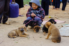 The boy selling his dogs at fair of ethnic minorities people Stock Photo