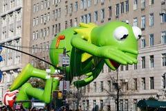 Kermit Fotografia Stock