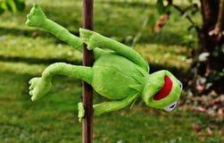 Kermit el juguete de la rana Fotos de archivo libres de regalías