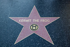 Kermit the Frog Hollywood Star Stock Images