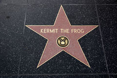 Kermit the Frog Hollywood Star Stock Image