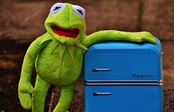 Kermit the Frog Plush Toy Stock Images