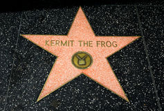 Kermit the Frog Star Royalty Free Stock Image