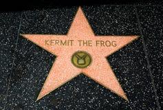 Kermit l'étoile de grenouille Image libre de droits