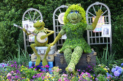 Disney Muppets Topiary. An image of the Kermit and Miss Piggy topiary representative of the 2014 Epcots International Flower & Garden Festival at Disney World Stock Images