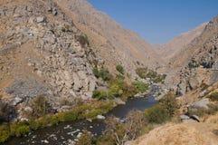 kern rzeka Obraz Royalty Free