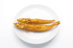 Kernachtig Fried Fish op Witte Achtergrond stock foto's