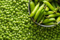 Kerne der grünen Erbsen Stockfotografie