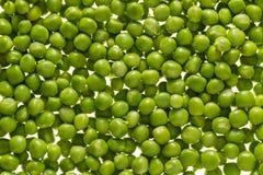 Kerne der grünen Erbsen Stockbild
