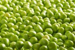 Kerne der grünen Erbsen Stockbilder
