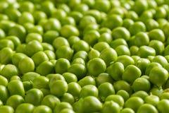 Kerne der grünen Erbsen Stockfotos
