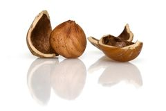 Kernel of a hazelnut Royalty Free Stock Photography
