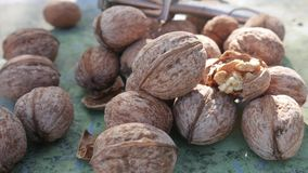 Kernel Nut, Cracked and Whole Walnut on Old Green Desk