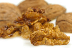 Kernel walnut Royalty Free Stock Image