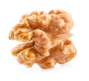 Kernel walnut Royalty Free Stock Photo