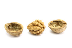 Kernel and walnut shells Royalty Free Stock Image