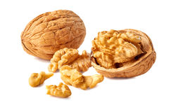 Kernel and whole walnut on white Royalty Free Stock Photos