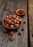 Kernels of hazelnuts Stock Image