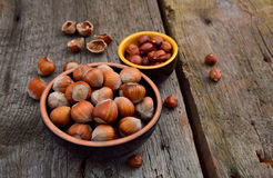 Kernels of hazelnuts Stock Photos